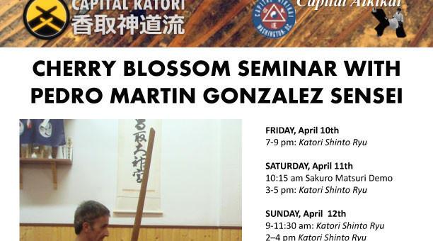 Seminario Tenshin Shôden Katori Shintô Ryû Washington D.C. (U.S.A.) 2015